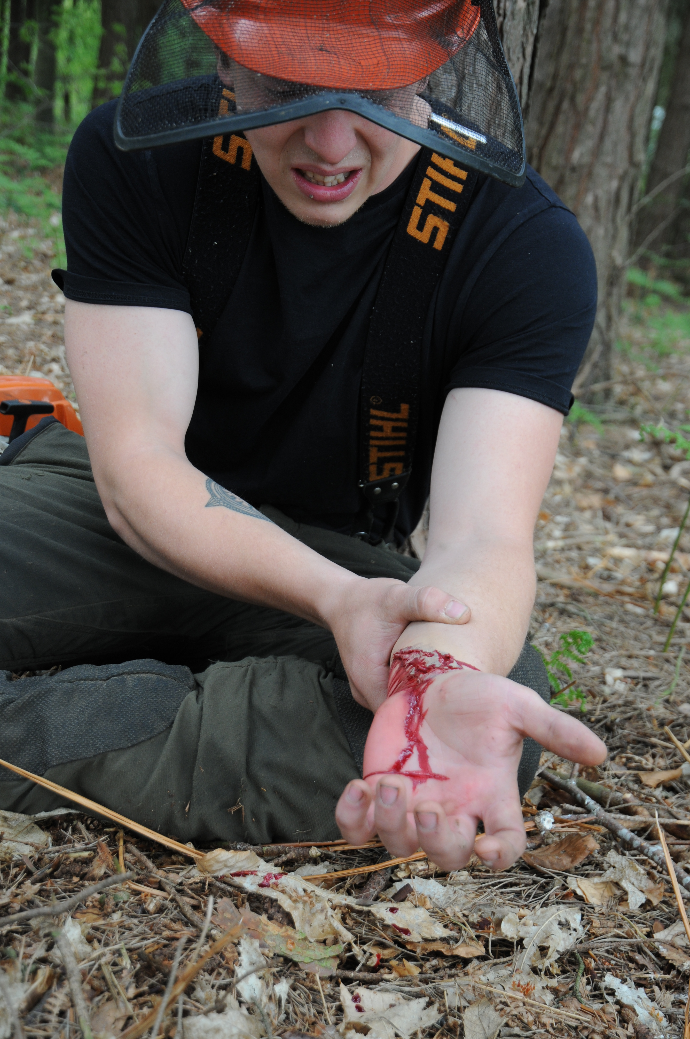 Forestry First Aid (+F) Training - TreeHouse inc  Kingswood